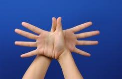 Hand Lizenzfreies Stockbild