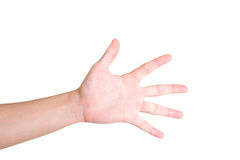 Hand. Male hand over the white background stock photography