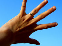 Hand. Five fingers Royalty Free Stock Photo