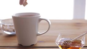 Hand adding sugar to cup of tea or coffee stock footage