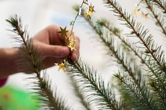 Hand adorn Christmas tree. Decoration of gold color royalty free stock photo