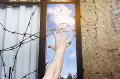A hand against the backdrop of a barbed wire stretches to freedo Royalty Free Stock Photo