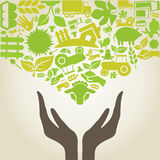 Hand agriculture. Hands in agriculture. A vector illustration stock illustration