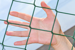 Hand anf fence Royalty Free Stock Photography
