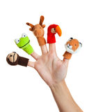 Hand with animal puppets. Female hand wearing 5 finger puppets; monkey, frog, reindeer, parrot; lion Stock Photos