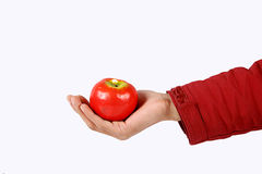 Hand Apple Stock Photo
