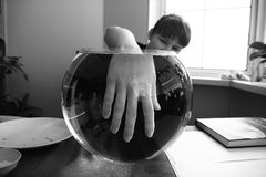 Hand in aquarium Stock Images
