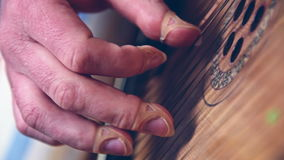 Hand With Artificial Nail Playing On Bandura. Traditional Ukrainian Musical Instrument stock video