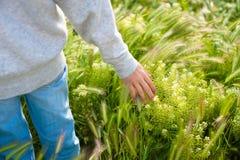 Hand auf dem Gras am schönen Tag, entspannen sich Tag, sich entspannen Hand auf dem Gras, Hand mit Sunny Day Lizenzfreies Stockbild