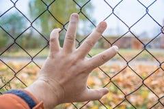 Hand auf einem Zaun, dort ist keine Weise, Tschornobyl Stockfotografie