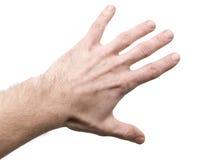 Hand auf weißem Hintergrund Stockfoto