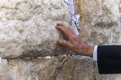Hand av den be mannen på den västra väggen i Jerusalem Gamla äldre handlag en sakral sten i bön Traditionell ritual för fotografering för bildbyråer