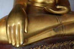 Hand av den guld- Buddhastatystuckaturen i olik ställing i lång korridor av Wat Phra Temple, Bangkok, Thailand royaltyfri foto