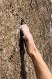 Hand av klättraren under att klättra berg Arkivfoton