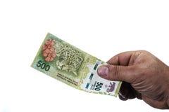 Hand av mannen som rymmer en pesoräkning för 500 Argentinean i som en jagua Arkivbild