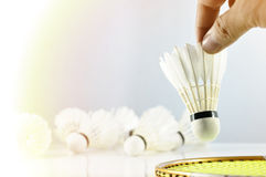Hand of badminton player with racket and shuttlecock Stock Images