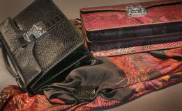 Hand bags and silk scarf Royalty Free Stock Image