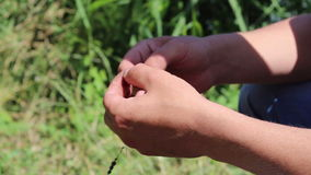 Hand and bait to fish Stock Photo