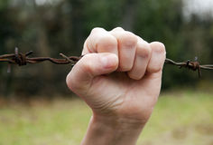 Hand on barbed wire Royalty Free Stock Photos