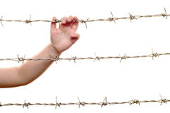 Hand on barbed wire(2) Stock Photos