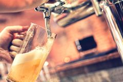 Hand of bartender pouring a large lager beer from tap at bistro Royalty Free Stock Photos