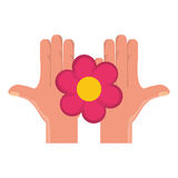 Hand with Beautiful flower Stock Images