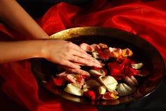 Hand beauty Royalty Free Stock Photo