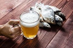 Hand with beer glass and dried fish. Royalty Free Stock Photos