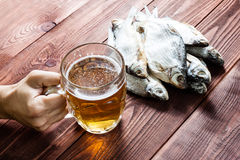 Hand with beer glass and dried fish. Royalty Free Stock Images