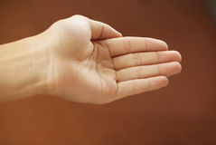 Hand begging. Human hand held up. Awaiting a gift Stock Images