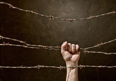 Hand behind barbed wire Stock Images