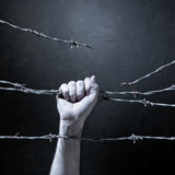 Hand behind barbed wire Royalty Free Stock Images