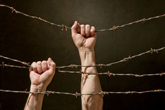 Hand behind barbed wire. With dark background Stock Photo