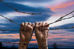 Hand behind barbed wire. Hands behind barbed wire with sunset in the background Stock Photos