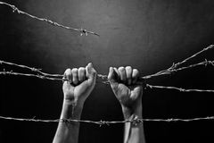 Hand behind barbed wire. With dark background Royalty Free Stock Photo