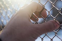 Hand behind bars royalty free stock images