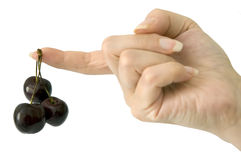 Hand with black cherries Stock Photography