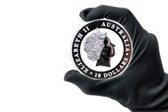 Hand in black glove holding large silver dollars coin royalty free stock photography