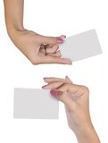 Hand with blank card. Female hand holding a blank business card isolated on white background Royalty Free Stock Images