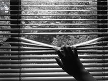 A hand and blinds stock photos