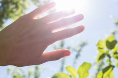 Hand blocking the sun. Female hand and rays of the sun. Bright summer weather Royalty Free Stock Images