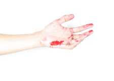 Hand in blood on a white background Royalty Free Stock Photography