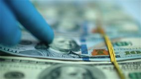Hand in blue glove moving packs of US dollars on white surface. Close-up stock video footage