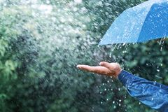 Hand and blue umbrella under heavy rain against nature background. Rainy weather concept