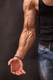 Hand bodybuilders with veins Stock Photo
