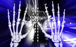 Hand bone Royalty Free Stock Photo