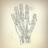 Hand Bone. Concept of blueprint of A.I. invention, robot hand and bone diagram Stock Photos