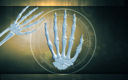 Hand bone. Digital illustration of hand bone in colour background Royalty Free Stock Photography