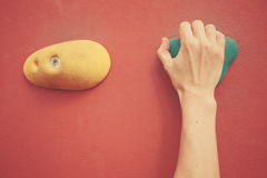 Hand on bouldering wall Royalty Free Stock Photography