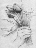 Hand with a bouquet of tulips. Hand drawn pencil sketch of a hand holding a bouquet of tulips Stock Photo